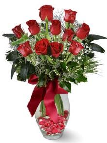 9 adet gül  İstanbul online çiçekçi , çiçek siparişi  kirmizi gül