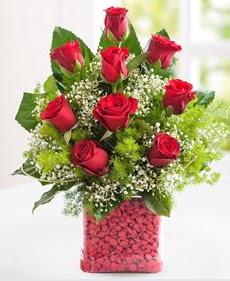 Cam içerisinde 9 adet kırmızı gül  İstanbul online çiçekçi , çiçek siparişi
