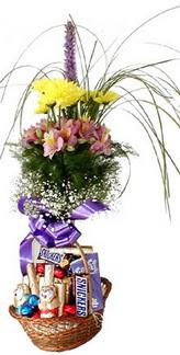 İstanbul hediye çiçek yolla  Mevsim çiçekleri ve çikolata