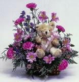 İstanbul çiçekçi mağazası  oyuncak ve mevsim çiçekleri