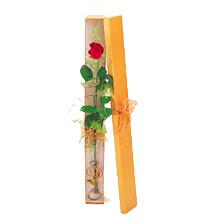ince  kutuda  1  gül   İstanbul 14 şubat sevgililer günü çiçek