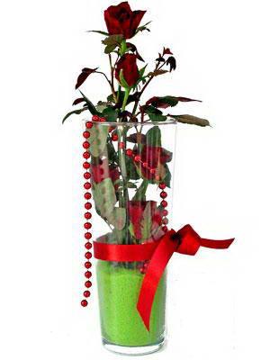 İstanbul çiçek yolla  Cam yada mika içerisinde 9 adet kirmizi gül - sevdiklerinize özel