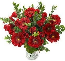 5 adet kirmizi gül 5 adet gerbera aranjmani  İstanbul kaliteli taze ve ucuz çiçekler