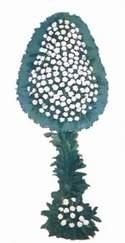 İstanbul çiçek yolla  dügün açilis çiçekleri  İstanbul internetten çiçek siparişi