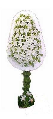 İstanbul yurtiçi ve yurtdışı çiçek siparişi  nikah , dügün , açilis çiçek modeli  İstanbul çiçek yolla
