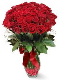 19 adet essiz kalitede kirmizi gül  İstanbul çiçek , çiçekçi , çiçekçilik