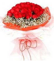 İstanbul hediye çiçek yolla  21 adet askin kirmizi gül buketi