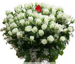 İstanbul online çiçekçi , çiçek siparişi  100 adet beyaz 1 adet kirmizi gül buketi