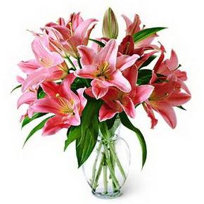 3 dal kazablanka görsel vazosu  İstanbul İnternetten çiçek siparişi