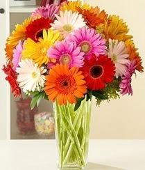 İstanbul çiçek siparişi sitesi  15 adet gerbera çiçek vazosu