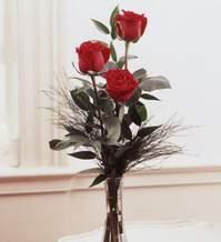 İstanbul online çiçekçi , çiçek siparişi  Vazoda 3 adet güzel gül