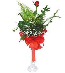 İstanbul ucuz çiçek gönder  Cam vazoda masum tek gül