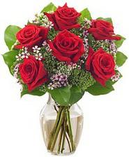 Kız arkadaşıma hediye 6 kırmızı gül  İstanbul İnternetten çiçek siparişi