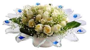 İstanbul çiçekçi mağazası  11 adet Beyaz güller özel cam tanzim