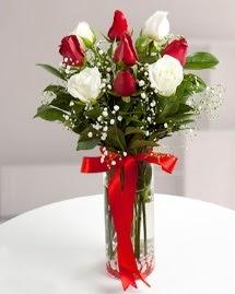 5 kırmızı 4 beyaz gül vazoda  İstanbul çiçekçi telefonları