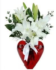 Kalp vazoda 3 kazablanka çiçeği  İstanbul cicekciler , cicek siparisi