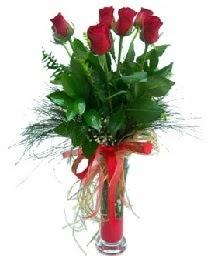 vazo içerisinde 5 kırmızı gül  İstanbul internetten çiçek siparişi