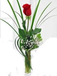 Cam içerisinde 1 kırmızı gül  İstanbul uluslararası çiçek gönderme