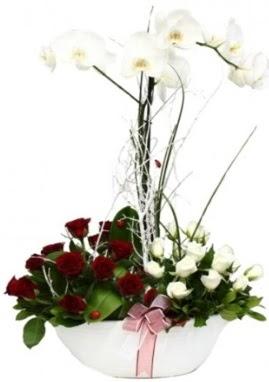 Tek dal beyaz orkide 8 beyaz 8 kırmızı gül  İstanbul çiçek online çiçek siparişi