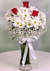 Cam içinde papatyalar 3 adet kırmızı gül  Hediye Çiçek ucuz çiçek gönder