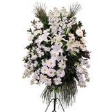 İstanbul çiçek gönderme  Ferforje beyaz renkli kazablanka