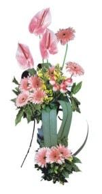 İstanbul internetten çiçek siparişi  Pembe Antoryum Harikalar Rüyasi