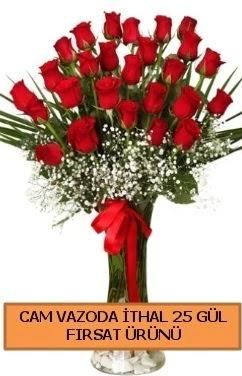 Cam vazoda ithal 1. kalite 25 gül  İstanbul online çiçekçi , çiçek siparişi