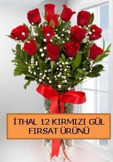 İthal kırmızı 12 adet kaliteli gül  İstanbul çiçek mağazası , çiçekçi adresleri