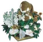 İstanbul çiçek satışı  Gerbera antoryum aranjmani