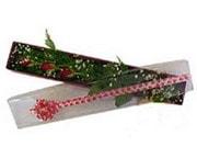 İstanbul kaliteli taze ve ucuz çiçekler  3 adet gül.kutu yaldizlidir.