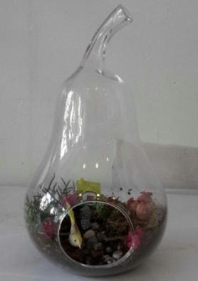 Armut orta boy cam terrarium tanzim  İstanbul hediye sevgilime hediye çiçek