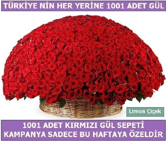 1001 Adet kırmızı gül Bu haftaya özel  İstanbul cicekciler , cicek siparisi