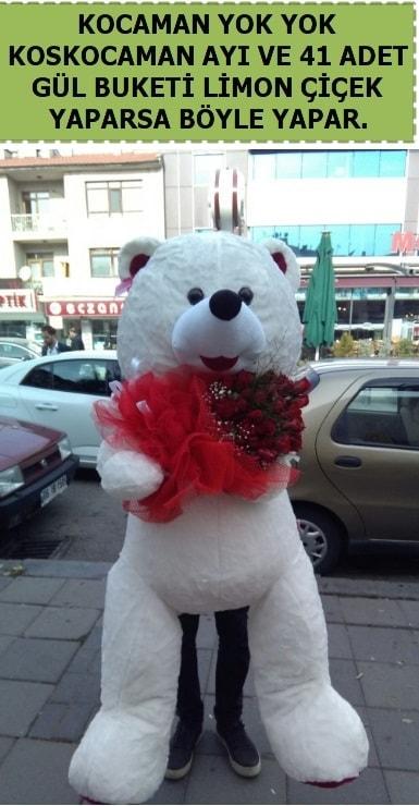 Koskocaman beyaz ayı ve 25 adet gül  Hediye Çiçek yurtiçi ve yurtdışı çiçek siparişi