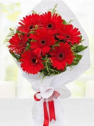 Kırmızı Gelbera Buketi  İstanbul İnternetten çiçek siparişi