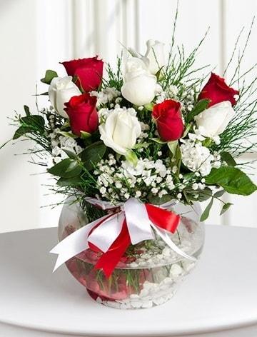 Aşk Küresi  5 beyaz 5 kırmızı gül fanusta  İstanbul online çiçekçi , çiçek siparişi