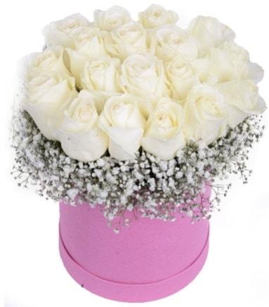 Renkli kutuda 19 adet beyaz gül  İstanbul online çiçekçi , çiçek siparişi
