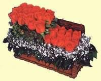 İstanbul hediye sevgilime hediye çiçek  Sandikta 13 adet güller